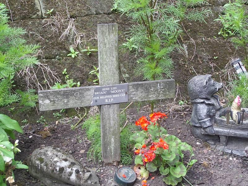 grób kota z parowozowni