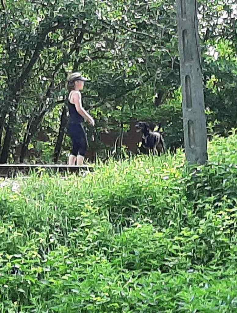 kobieta z psem na torach bocznicy